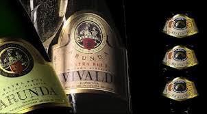 Arunda-Vivaldi-470x260
