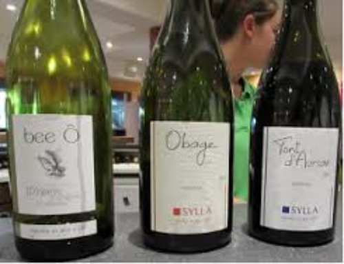Le Tour (des vins) de France – Tappa 6: i vini della Provenza
