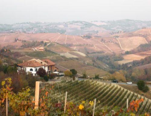 Flavio Roddolo: un vino d'altri tempi
